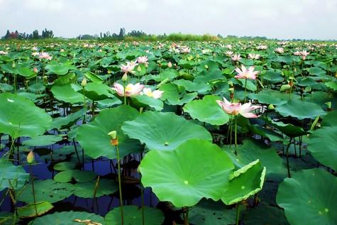 Vietnam is beautiful