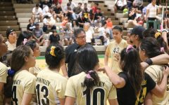 Lady Tigers battle in states