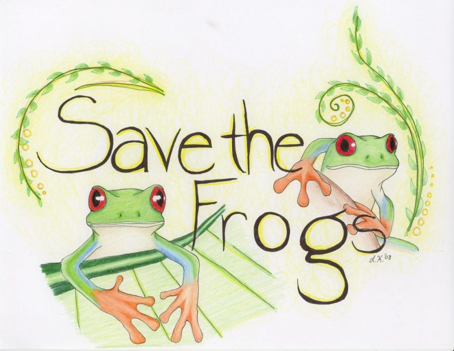 World+Frog+Day+will+be+on+March+20%2C+save+the+frogs%21