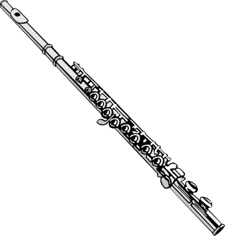 The flute is one of many instruments used in a band. It is a part of the woodwind family and produces sound by blowing air across its mouthpiece.